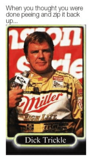 Reddit, Dick, and Thought: When you thought you were  done peeing and zip it back  up...  Eller  IGH LE  Dick Trickle Far too busy for the followup jiggle...