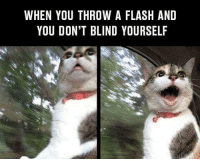 Me on counter strike 😂: WHEN YOU THROW A FLASH AND  YOU DON'T BLIND YOURSELF Me on counter strike 😂