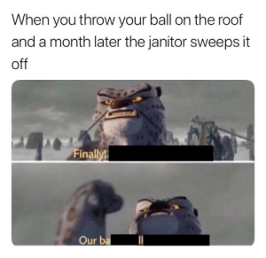 You, Ball, and Janitor: When you throw your ball on the roof  and a month later the janitor sweeps it  off  Finally!  Our b