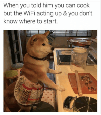 Funny, Memes, and Wifi: When you told him you can cook  but the WiFi acting up & you don't  know where to start You're gonna want to order your memes in bulk baby. #memes #pics #funny