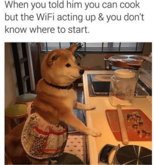 Wifi, Acting, and Him: When you told him you can cook  but the WiFi acting up & you don't  know where to start Me👨🍳irl