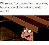 Dank, Watch, and Old: When you too grown' for the drama,  but not too old to lurk and watch it  unfold