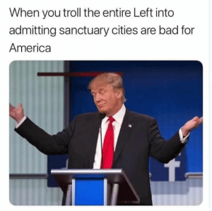 Sanctuary Cities: When you troll the entire Left into  admitting sanctuary cities are bad for  America