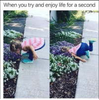 "Life, Memes, and Http: When you try and enjoy life for a second <p>Enjoying life via /r/memes <a href=""http://ift.tt/2A9WdHX"">http://ift.tt/2A9WdHX</a></p>"