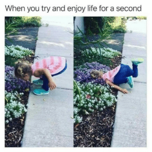 Life, You, and For: When you try and enjoy life for a second