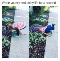 Life, Memes, and 🤖: When you try and enjoy life for a second Exactly 😂