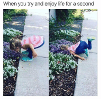 Life, Memes, and 🤖: When you try and enjoy life for a second Exactly