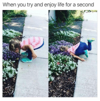 Funny, Life, and Meme: When you try and enjoy life for a second SundayFunday with @meme.w0rld 😭