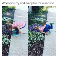 Funny, Life, and You: When you try and enjoy life for a second