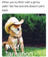 Funny, Yee, and Girl: When you try flirtin' with a girl by  yellin' Yee Yee and she doesn't yell it  back  tarnation 😂😂😂