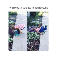 Life, You, and For: When you try to enjoy life for a second