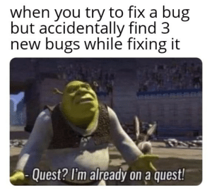 me every time: when you try to fix a bug  but accidentally find 3  new bugs while fixing it  Quest? I'm already on a quest! me every time