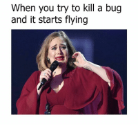 Dank, 🤖, and Bug: When you try to kill a bug  and it starts flying time to panic ⚠⚠