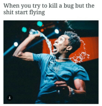 Blackpeopletwitter, Shit, and Got: When you try to kill a bug but the  shit start flying <p>Got me wishin for a burner (via /r/BlackPeopleTwitter)</p>