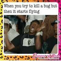 Kill it with fire 🔥🔥🔥 #QueensofSass: When you try to kill a bug but  then it starts flying  faceboo  k com UAqueen Sofsas Kill it with fire 🔥🔥🔥 #QueensofSass
