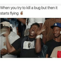 Memes, 🤖, and Bug: When you try to kill a bug but then it  starts flying Stop it 😂😂😂 yamgram yammy neezduts tuesday noharmdone