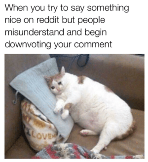Dank, Meme, and Memes: When you try to say something  nice on reddit but people  misunderstand and begin  downvoting your comment Please don't misunderstand this meme by MixedGender MORE MEMES