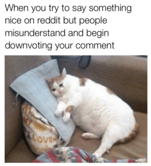 Reddit, Tumblr, and Blog: When you try to say something  nice on reddit but people  misunderstand and begin  downvoting your comment srsfunny:I was only trying to be nice