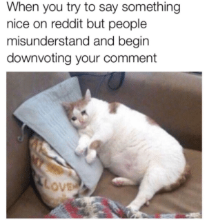 Meirl by mentos_are_good MORE MEMES: When you try to say something  nice on reddit but people  misunderstand and begin  downvoting your comment  LOVE Meirl by mentos_are_good MORE MEMES