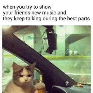 meirl: when you try to show  your friends new music and  they keep talking during the best parts meirl