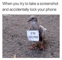 Memes, Phone, and 🤖: When you try to take a screenshot  and accidentally lock your phone  @dabmoms  I'M  STUPID I'm stupid (@dabmoms)