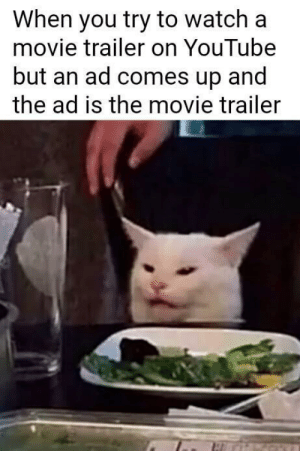 Thats a twist: When you try to watch a  movie trailer on YouTube  but an ad comes up and  the ad is the movie trailer Thats a twist