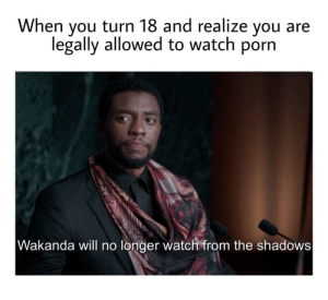 Oh yeah: When you turn 18 and realize you  legally allowed to watch porn  Wakanda will no longer watch from the shadows Oh yeah