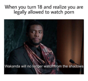 watch porn: When you turn 18 and realize you  legally allowed to watch porn  Wakanda will no longer watch from the shadows