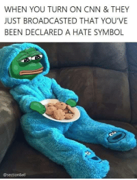 RIP Pepe: WHEN YOU TURN ON CNN & THEY  JUST BROADCASTED THAT YOU'VE  BEEN DECLARED A HATE SYMBOL  @section atl RIP Pepe