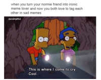 Crying, Friends, and Ironic: when you turn your normie friend into ironic  meme lover and now you both love to tag each  other in sad memes  eendmylife2  This is where I come to cry.  -Cool
