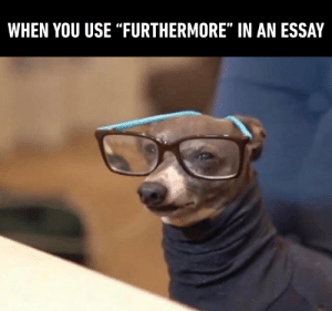 "Dank, 🤖, and You: WHEN YOU USE ""FURTHERMORE"" IN AN ESSAY Also ""henceforth"" and ""thus"""