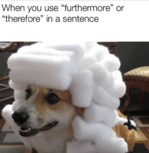 """Yep this is big brain time: When you use """"furthermore"""" or  """"therefore"""" in a sentence Yep this is big brain time"""