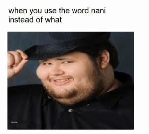 Nani the fuck?: when you use the word nani  instead of what Nani the fuck?