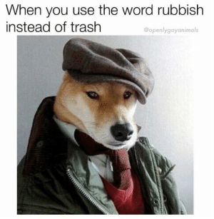 Dank, Memes, and Target: When you use the word rubbish  instead of trash  @openlygayanimals And a cup of tee by IsakSolarInte MORE MEMES