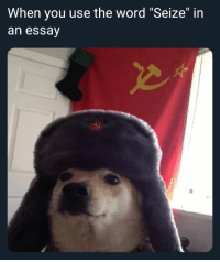 """Memes, Word, and You: When you use the word """"Seize"""" in  an essay Seize the memes"""