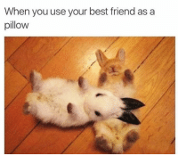 Best Friend, Funny, and Best: When you use your best friend as a  pillow Tag ya bestie