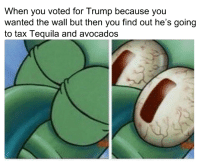 Make Guac Cheap Again!: When you voted for Trump because you  wanted the wall but then you find out he's going  to tax Tequila and avocados Make Guac Cheap Again!