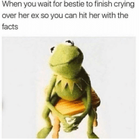 Crying, Facts, and Girl Memes: When you wait for bestie to finish crying  over her ex so you can hit her with the  facts You can go shave your back now. Bye Jason
