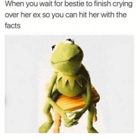Crying, Facts, and Funny: When you wait for bestie to finish crying  over her ex so you can hit her with the  facts SarcasmOnly