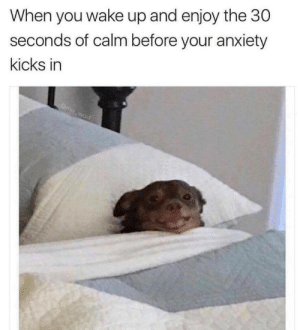 Anxiety, Wake, and You: When you wake up and enjoy the 30  seconds of calm before your anxiety  kicks in