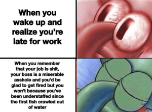 Halloween, Shit, and Work: When you  wake up and  realize you're  late for work  When you remember  that your job is shit,  your boss is a miserable  asshole and you'd be  glad to get fired but you  won't because you've  been understaffed since  the first fish crawled out  of water It doesn't need to be halloween to have a skeleton crew