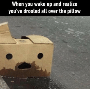 Dank, Memes, and Target: When you wake up and realize  you've drooled all over the pillow meirl by BestConfidence MORE MEMES