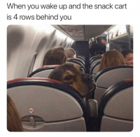 Dank Memes, Wake, and You: When you wake up and the snack cart  is 4 rows behind you 😩😩😩😩 @davie_dave