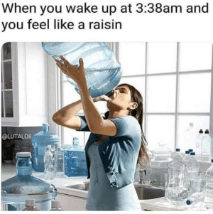 27 funny memes can't stop laughing: When you wake up at 3:38am and  you feel like a raisin  @LUTAL08 27 funny memes can't stop laughing