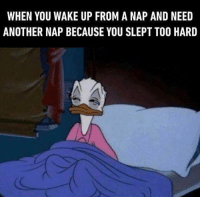 When You Wake Up From A Nap: WHEN YOU WAKE UP FROM A NAP AND NEED  ANOTHER NAP BECAUSE YOU SLEPT TO0 HARD