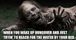 Top 25 True Hangover Memes Ever: WHEN YOU WAKE UP HUNGOVER AND JUST  TRYIN' TO REACH FOR THE WATER BY YOUR BED. Top 25 True Hangover Memes Ever