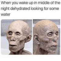 Lol, Memes, and Water: When you wake up in middle of the  night dehydrated looking for some  water Lol 😂