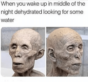 Dank, Memes, and Target: When you wake up in middle of the  night dehydrated looking for some  water Meirl by Mister-Patrick FOLLOW HERE 4 MORE MEMES.