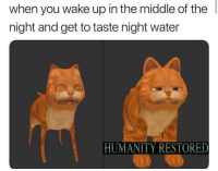 The most satisfying SIPP: when you wake up in the middle of the  night and get to taste night water  HUMANITY RESTORED The most satisfying SIPP