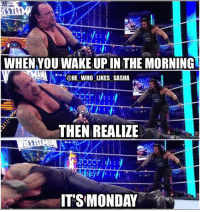 Monday Mornings <<<<. wwe wwememe wwememes romanreigns romanempire attitudeera ajstyles johncena wrestlemania wrestler wrestling kevinowens prowrestling professionalwrestling wwenxt thankyouundertaker wweuniverse kane wwenetwork wwesuperstars raw wweraw wwf mondaynightraw smackdown smackdownlive nxt wrestlemania33 undertaker theundertaker: WHEN YOU WAKE UP IN THE MORNING  @HE WHO LIKES SASHA  THEN REALIZE  ITS MONDAY Monday Mornings <<<<. wwe wwememe wwememes romanreigns romanempire attitudeera ajstyles johncena wrestlemania wrestler wrestling kevinowens prowrestling professionalwrestling wwenxt thankyouundertaker wweuniverse kane wwenetwork wwesuperstars raw wweraw wwf mondaynightraw smackdown smackdownlive nxt wrestlemania33 undertaker theundertaker